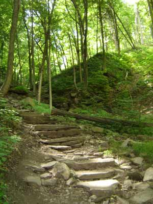 steps down niagara glen